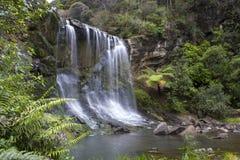 Mokoroa vattenfall Auckland Nya Zeeland Arkivbilder