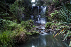 Mokoroa Waterfall Royalty Free Stock Photography