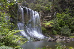 Mokoroa Waterfalls Auckland New Zealand. Bush walk around Waitakere Ranges stock images