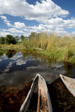 Mokoros in the Delta. Two Mokoro boats sitting on shore in the Okavango Delta in Botswana Royalty Free Stock Images