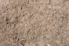 mokra brud ziemia Obraz Stock