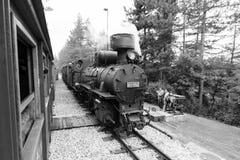 Mokra Gora,塞尔维亚, 2017年7月17日:等待单色蒸汽机车的相对物 库存照片