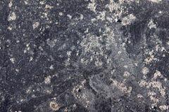 Mokra kamienna struktura Zdjęcia Stock