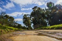 Mokra wiejska droga gruntowa otaczał mój drzewa i dom z niebieskimi niebami i chmurami - Napier, Zachodni przylądek, Południowa A zdjęcie royalty free