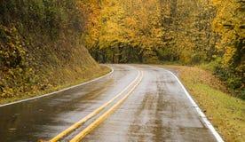 Mokre Blacktop Dwa pasa ruchu autostrady krzywy Przez spadków drzew jesieni Obrazy Royalty Free