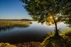 Mokre jezioro Zdjęcia Stock