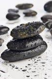 mokre kamienie rzek Zdjęcie Stock