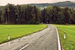 Mokry asfaltowej drogi trought głęboki lasowy naturalny dramatyczny backg fotografia royalty free