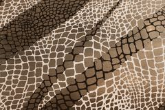 Mokry ceramicznej płytki tło z czarny i biały siatka wzorem na popielatym obraz stock