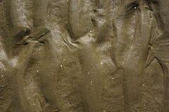 mokry piasek Zdjęcia Stock