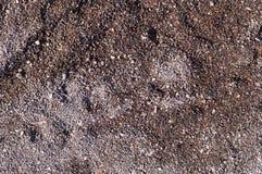 Mokry piasek z śladami tło, winieta Zdjęcie Stock