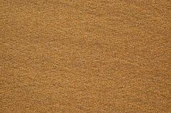 mokry piaska morze Obraz Royalty Free