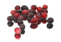 Mokrzy Cranberries na lustrze obraz stock