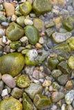 Mokrzy głazy textured tło Zdjęcia Royalty Free