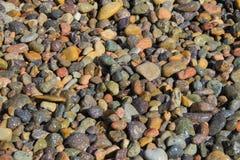 Mokrzy Plenerowi kamienie Wygrzewa się w słońcu Zdjęcia Royalty Free