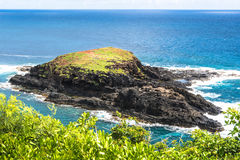 Mokuaeae Islet in Kilauea Point, Hawaii Stock Image