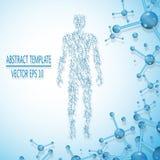 A molécula abstrata baseou a figura humana conceito ilustração do vetor