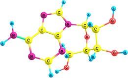 Molécula da adenosina isolada no branco ilustração do vetor
