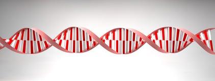 Molécula da estrutura de pilha das hélices do ADN Fotos de Stock