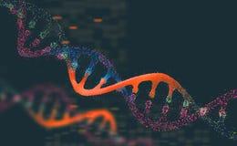 Molécula da pesquisa do ADN ilustração 3D Análise do genoma humano da estrutura ilustração do vetor