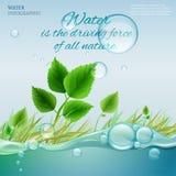 Molécula de agua Fotografía de archivo libre de regalías