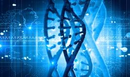 Molécula de la DNA fotografía de archivo