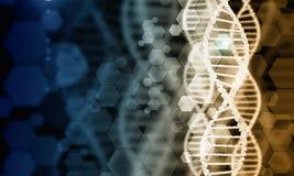 Molécula de la DNA fotos de archivo