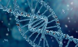 Molécula de la DNA Foto de archivo libre de regalías
