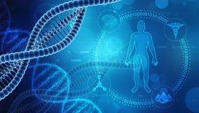 Molécula de la DNA aislada en fondo médico representación 3d libre illustration