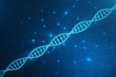 Molécula de la DNA de Digitaces, estructura Genoma humano del código binario del concepto Molécula de la DNA con los genes modifi imagen de archivo