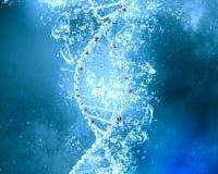 Molécula de la DNA en agua imágenes de archivo libres de regalías