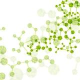 Molécula de la DNA, fondo abstracto Imagen de archivo libre de regalías