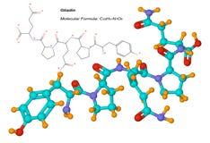 Molécula de la gliadina, componente del gluten