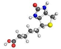 Molécula de la vitamina B7 Foto de archivo libre de regalías