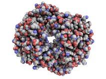 Molécula de proteína humana de la hemoglobina (Hb), estructura química. Foto de archivo