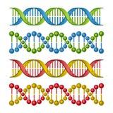 Moléculas de la DNA fijadas para la ciencia y el diseño de la medicina. Vector Foto de archivo libre de regalías