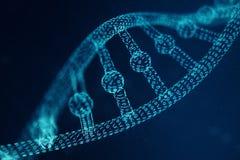 Molécule artificielle d'ADN d'intelegence L'ADN est convertie en code binaire Génome de code binaire de concept Technologie abstr photo stock