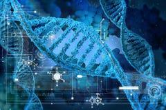 Molécules d'ADN Photographie stock