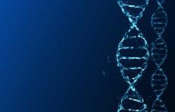 Molécules de l'ADN Image libre de droits