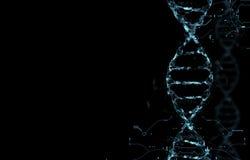 Molécules de l'ADN Photo stock