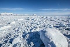 Mola ártica em Spitsbergen sul Fotos de Stock Royalty Free