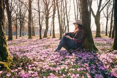 Mola açafrões Ar de ForestFresh inspiração Viajante fêmea Foto de Stock Royalty Free