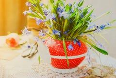 A mola adiantada bonita floresce, siberica do scilla, no bule vermelho na tabela branca Fotos de Stock