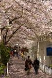 Mola Cherry Blossoms de Vancôver canadá Imagem de Stock