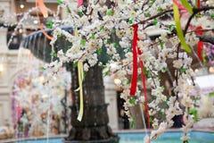 A mola da árvore floresce rosa das flores brancas Imagens de Stock Royalty Free