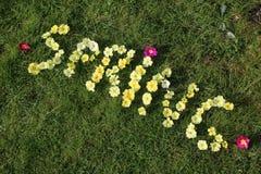 A MOLA da palavra soletrada nas flores Fotografia de Stock Royalty Free