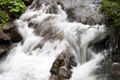 Mola de água na floresta Fotografia de Stock Royalty Free