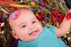Mola do bebê Fotos de Stock