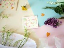 Mola do cumprimento, lírios do vale, cores pastel e uma fita para um presente Foto de Stock