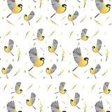 A mola do fundo do papel de parede floresce pássaros imagens de stock